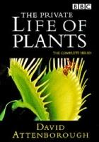 Prywatne życie roślin